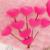 Rosa romântico subiu travesseiro brinquedos de pelúcia forma do amor almofada para inclinar-se presente dia dos namorados presente de casamento presente de natal YZT0112