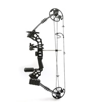 Left / Right Hand shooter Aluminum Alloy Pro Compound Bow with 20 70 Lbs Draw Weight for Human Adult Archery Shooting Hunting