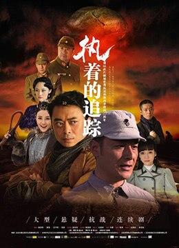 《执着的追踪》2017年中国大陆剧情电视剧在线观看