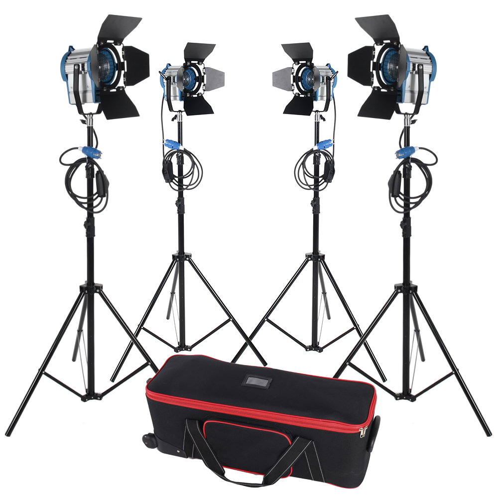 Free shipping 300w*2+650w*2 Tungsten Fresnel Light Spot Video Studio Light Continuous Light Camera for photography цены онлайн