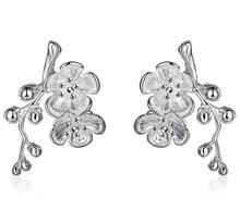 Pendientes De Plata De Ley Rose Silver-Plated Earings Boucle D'oreille Top Quality Plum Earrings Silver-plated Earring