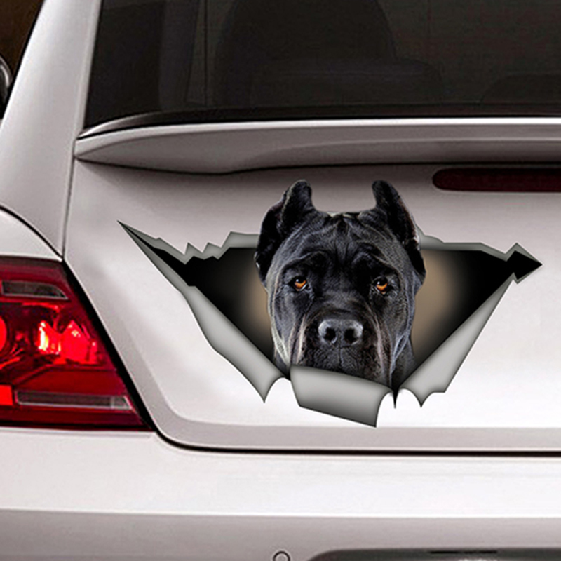 Image 2 - EARLFAMILY 13cm x 7.6cm Black Cane Corso Car Sticker Torn Metal Decal Reflective Stickers Waterproof Car Styling Pet Dog Decals-in Car Stickers from Automobiles & Motorcycles