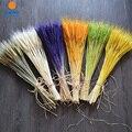 100 шт.  6 цветов в наличии  Натуральные сушеные цветы  букеты из натуральных пшеничных ушей  пшеничные ушные пучки