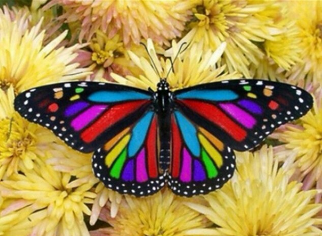 Full diamant mosaik diy diamant malerei colorful butterfly - Dekoration mosaik ...