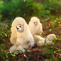 ZILIN simulated poodle dog cute dog toy dog doll for children home decoration or children toy