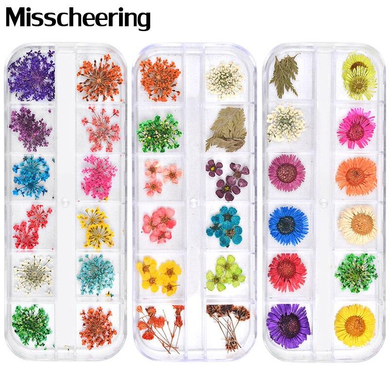 12 цветов сушеные цветы украшения для ногтей 3d натуральные ромашки Гипсофилы консервированные сухие цветы DIY наклейки маникюрные аксессуар...