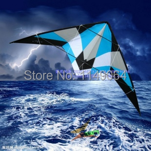 free shipping high quality 2.2m storm dual line stunt kite surf with handle line easy kite outdoor toys albatross hcxkite