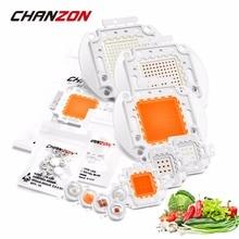 High Power LED Chip Gesamte Spektrum Royal Blau 440nm Deep Red 660nm 1W 3W 5W 10W 20W 30W 50W 100W 660 nm für DIY Licht Anlage Wachsen