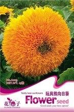 Цветок Семена Подсолнечника, оригинальной Упаковке 15 шт. Сад бонсай семена цветов, легко Расти Подсолнечник annuus