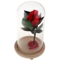 Romantic Beautiful Eternal Life Flower Red Rose in Glass Cover Wedding Valentine's Day Gift Desktop Decoration Stand