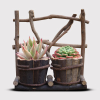 Individuality wooden round flowerpot fleshy combination plant pots branches hand made pots (without plants) AP10191739