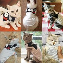 Breathable, fashionable cat shirt
