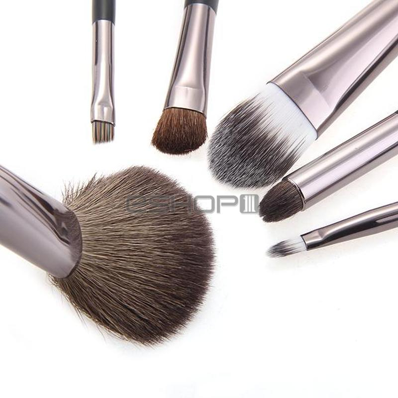 6 PCS Cosmetic Makeup Eyeshadow Brush Set Kit + Case