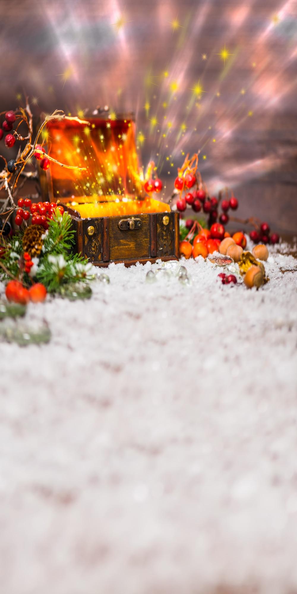 Christmas Backdrops Vinyl Cloth Photography Backgrounds