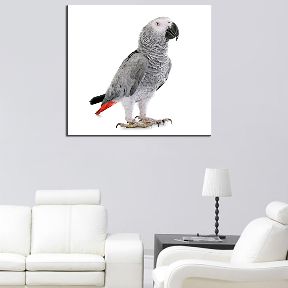 Garage Gym Wall Decor Us 10 99 Dpartisan No Frame Birds Parrots White Background Wall Decor Print On Canvas Sqaure Sizes In Painting Calligraphy From Home Garden On