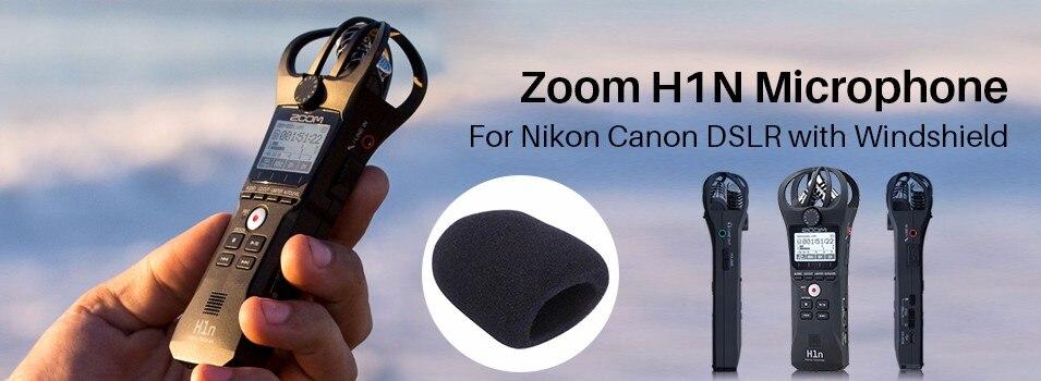 zoom-H1N