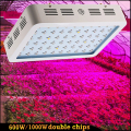 1000W 600W Double Chips LED Grow Light Full Spectrum 410-730nm for Indoor Plants and Flower Phrase with Very High Yield