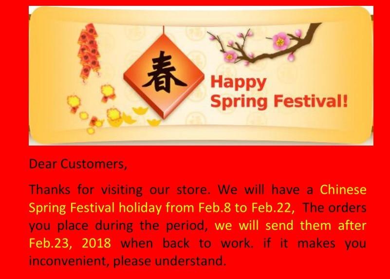 Mactron Spring Festival