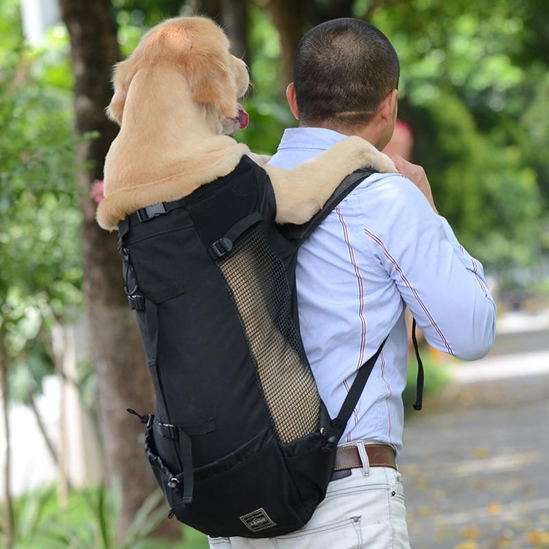 dog rucksack