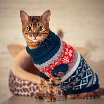 Petalk Snowflower Cat sweter dzianina Pet Jumper płaszcz psy kot świąteczne ubranka dla psów dla małych zwierząt XS S M L XL XXL