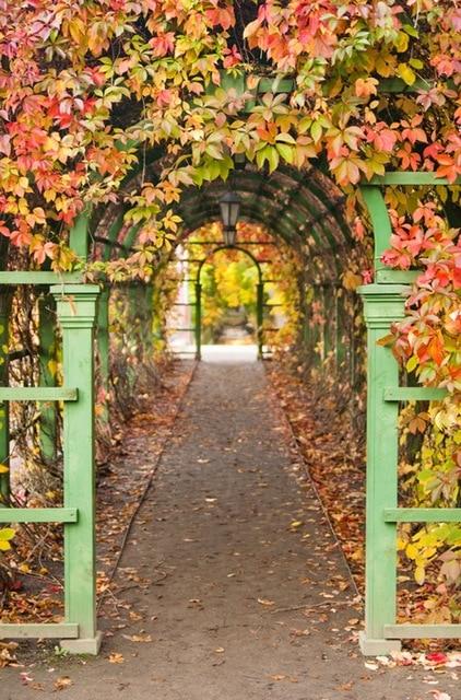 garden arches print autumn theme photography backdrops for studio kids birthday or festival d3207