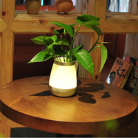 Rechargeable Creative LED Night Lamp Vase Touch Sensor Dimmable Sleep Light USB LED Night Light Table