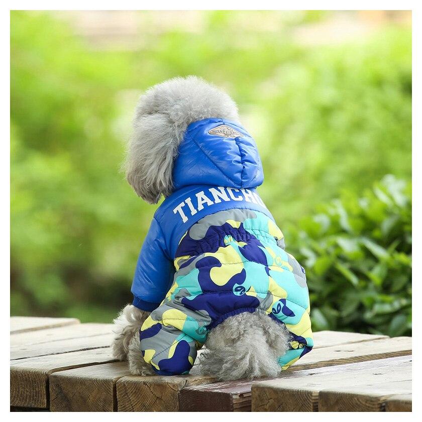 dog clothes 311