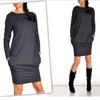 Casual Loose Pocket Long Sleeve Autumn Winter Dress 2017 Women O Neck Plus Size Sheath Dress