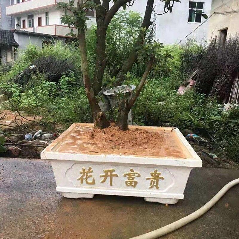 60 cm/23.62in Flessibile Caratteri Cinesi di Plastica Semplice Casa Giardinaggio Bonsai FAI DA TE di Cemento Vaso di Fiori Piazza Fioriera Muffa - 2