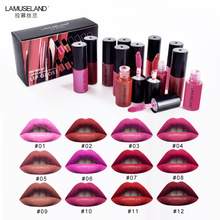 12 Pcs / Lot Travel Kit Tahan Lama Tahan Air Lipstik Matte Lip Gloss Demo Set 12 Warna Bibir Makeup Merek LAMUSELAND # L18L12