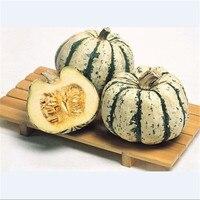 1 original pack of Japan  PUMPKIN seeds in original package very sweet fruit seeds, Japanese type Squash seeds