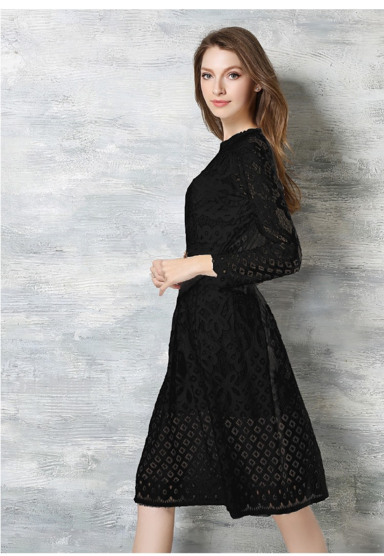 Beauty Long Sleeved Lace Dress 1
