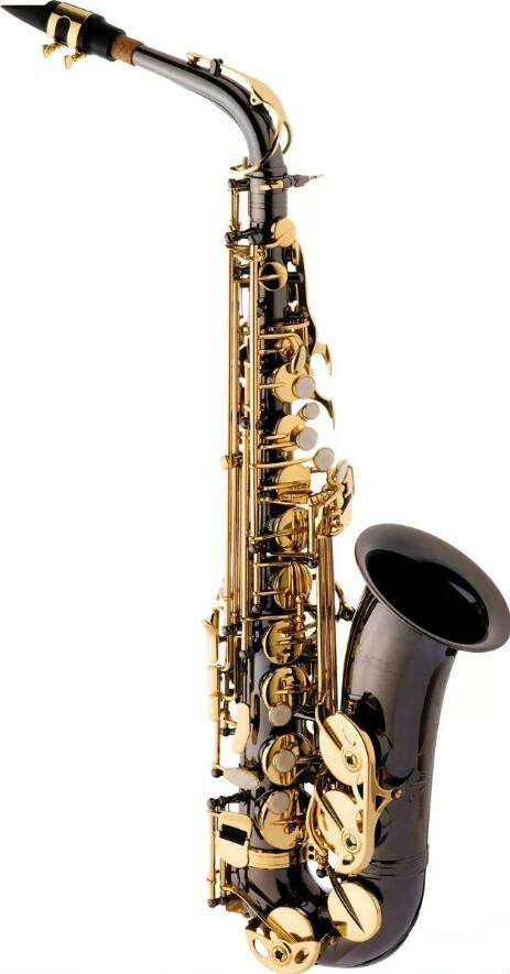 Eagle Sa500 Saxophone Alto in E flat Saxofone Black Nickel Gold Brass Instruments with Case