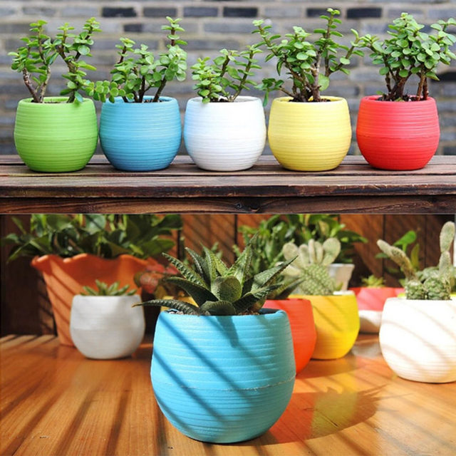 Online Shop Hot 1pcs Mini Flower Pots Gardening Pp Plastic Vase
