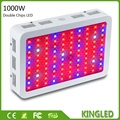 KingLED 600W 800W 1000W 1200W 1600W Double Chips LED Grow Light Full Spectrum For Indoor Plants and Flower Phrase High Yield