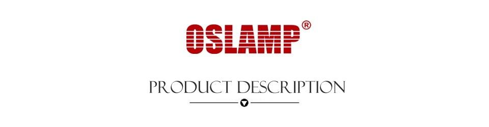 product-description