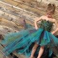 Tutu Meninas Vestido De Penas de Pavão Real Artesanal Vestido de Noite Fora Do Ombro Meninas Crianças Vestido Vestido de Festa Para O Aniversário Photoprops