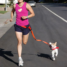 Новый поясной поводок для собак бега щенка собаки занятий спортом