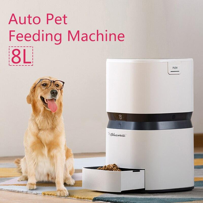 US 8L Automatic pet feeder USB Capacità di Carica Intelligente Cucciolo Del Gatto Del Cane Sano Porzione Programmabile Timer Distributore di Alimenti Per Il Cane
