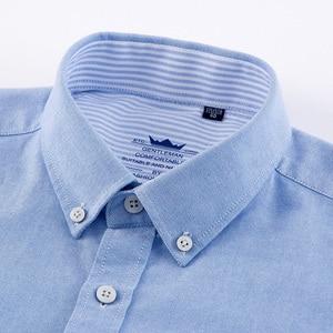 Image 4 - LANGMENG 100% Baumwolle einfarbig Herren Langarm kleid shirt männer Gestreifte Oxford Hemd Hohe Qualität Slim Fit Marke Casual shirts