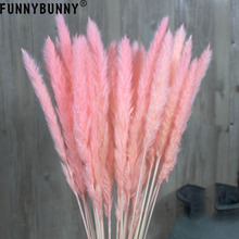 FUNNYBUNNY 15PCS Natural Dried Small Pampas Grass, Phragmites Communis,Wedding Flower Bunch, 75CM Tall for Home Decor