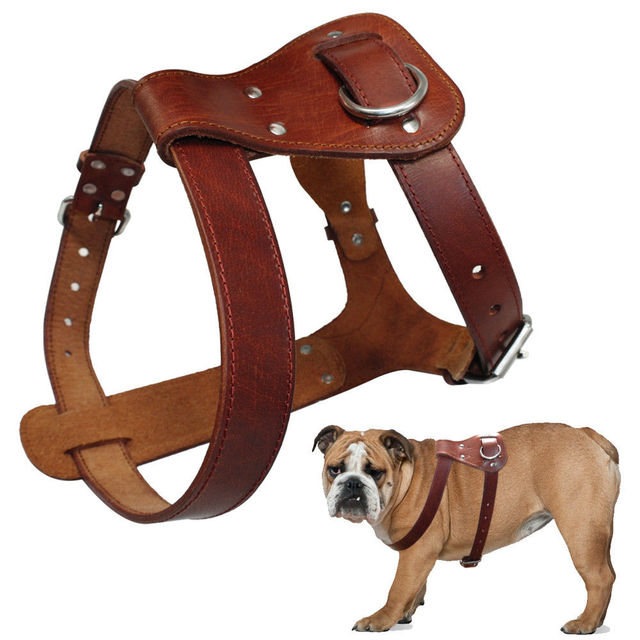 Genuine Leather Dog Harness Brown Real Leather Dogs Walking Training