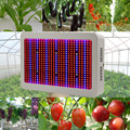 2pcs Full Spectrum 600W LED Grow Light Red+Blue+White+UV+IR SMD5730 Led Grow Lamps For Plant Flowering Vegetable  DHl  free