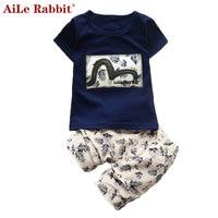 AiLe Rabbit 2017 Summer Boys Clothing Sets Kids Clothes For Boys Fashion T Shirt Pants 2