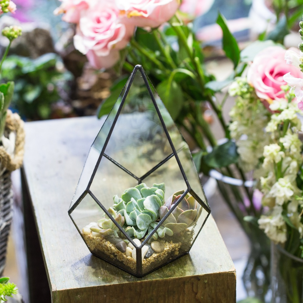 Office gardening Outdoor Gardening Glass Diamond Shape Indoor Flowers Planter For Succulents Plant Pot Bonsai Home Office Garden Flower Pot Decorativein Flower Pots Planters From Shutterstock Gardening Glass Diamond Shape Indoor Flowers Planter For Succulents