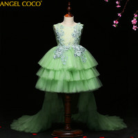Baby & Young Girls Kids Wedding Flower Girl Dress Princess Party Pageant Formal Dress Back Bow Sleeveless Lace Tulle Dress 3 15Y