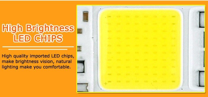 COB LED Lamp Chip 10W 15W W 30W 50W LED COB Bulb Lamp 2V IP65 Smart IC Driver Cold/ Warm White LED Spotlight Floodlight 3