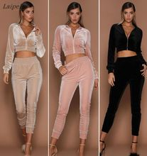 Laipelar Velvet Sets Casual Tracksuit 2017 New Autumn Women O Neck Sporting Suit Two Pieces Sportswear
