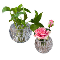 Crystal Ball Vase Home Decor Glass Flower Vase Terrarium Succulents Plant Gift Micro Landscape Cover And