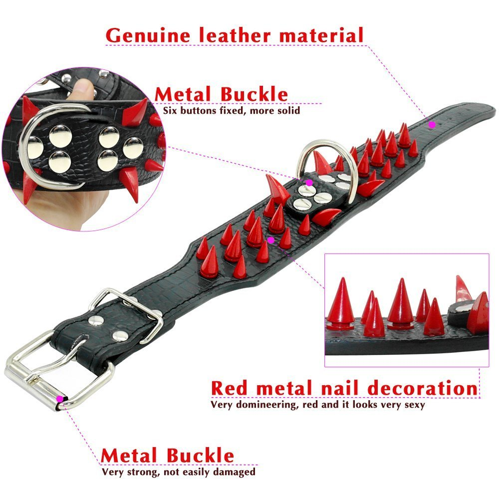 Spiked Leather Dog Collar Collar & Lead